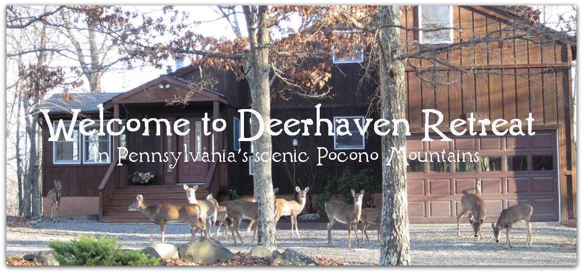 Deerhaven Retreat